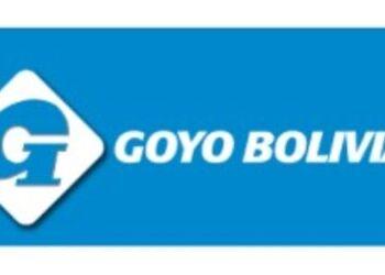 Foco solar inteligente - GOYO_BOLIVIA