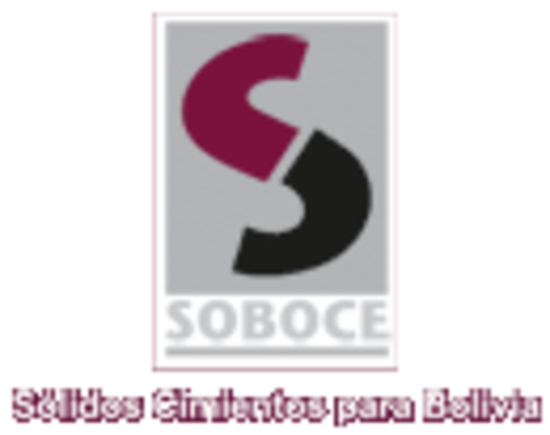 SOBOCE   CONSTRUEX